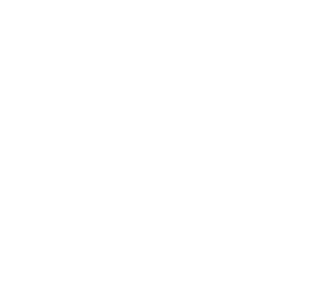 faros Brothers Logo